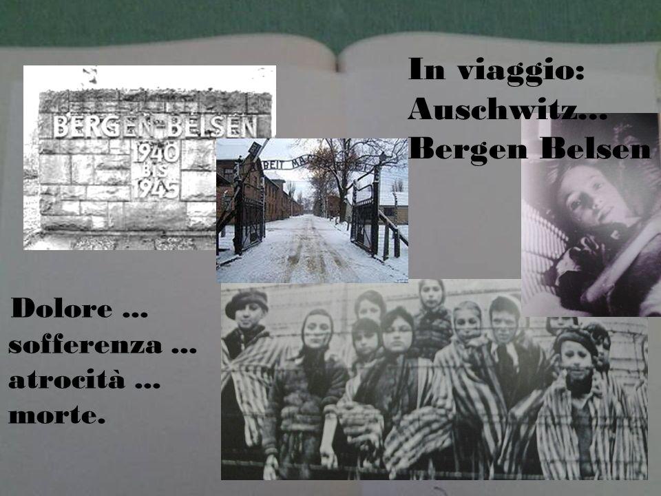 Dolore... sofferenza... atrocità... morte. In viaggio: Auschwitz... Bergen Belsen