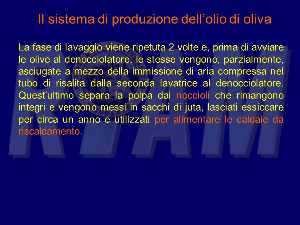Il sistema di produzione dellolio di oliva La fase di lavaggio viene ripetuta 2 volte e, prima di avviare le olive al denocciolatore, le stesse vengon