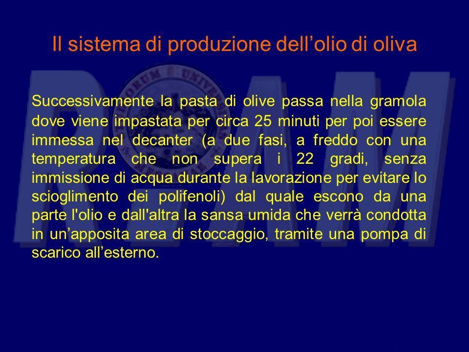 Il sistema di produzione dellolio di oliva Successivamente la pasta di olive passa nella gramola dove viene impastata per circa 25 minuti per poi esse