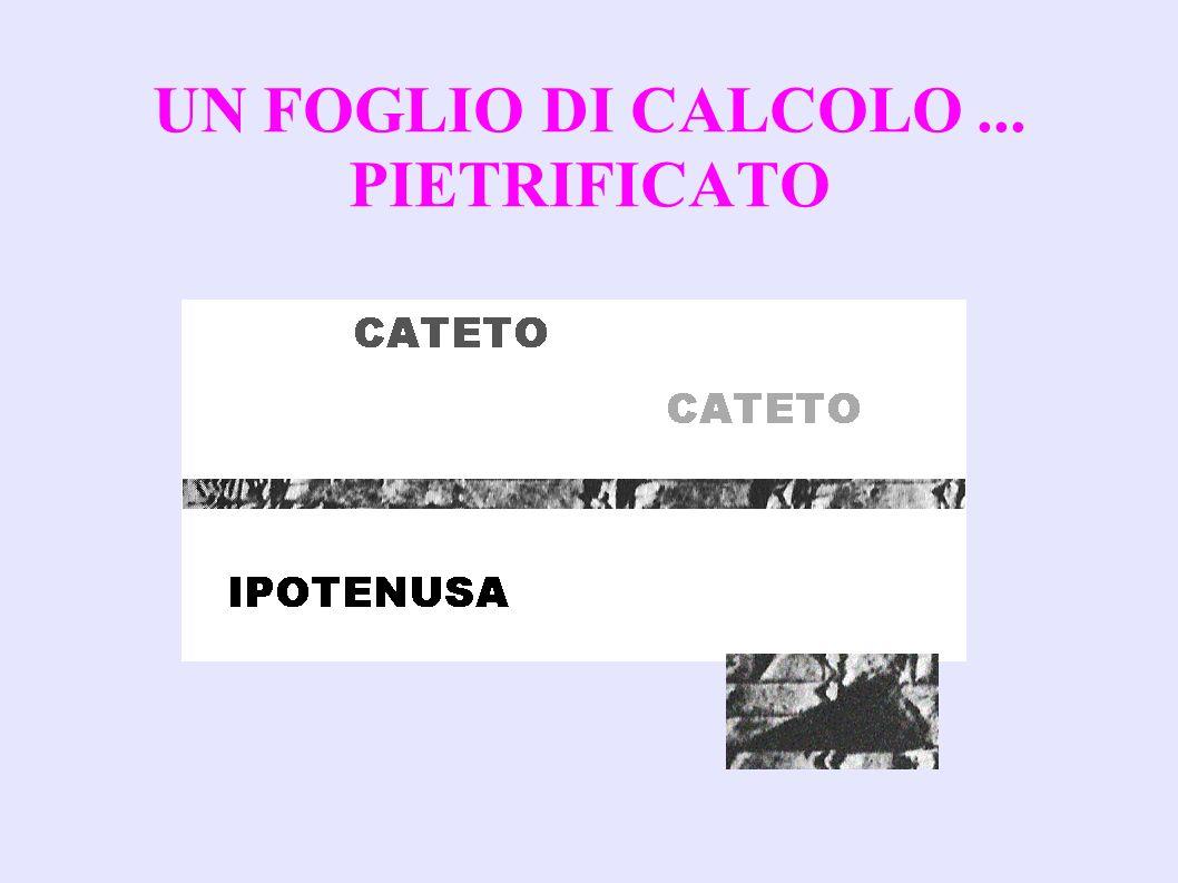 UN FOGLIO DI CALCOLO... PIETRIFICATO