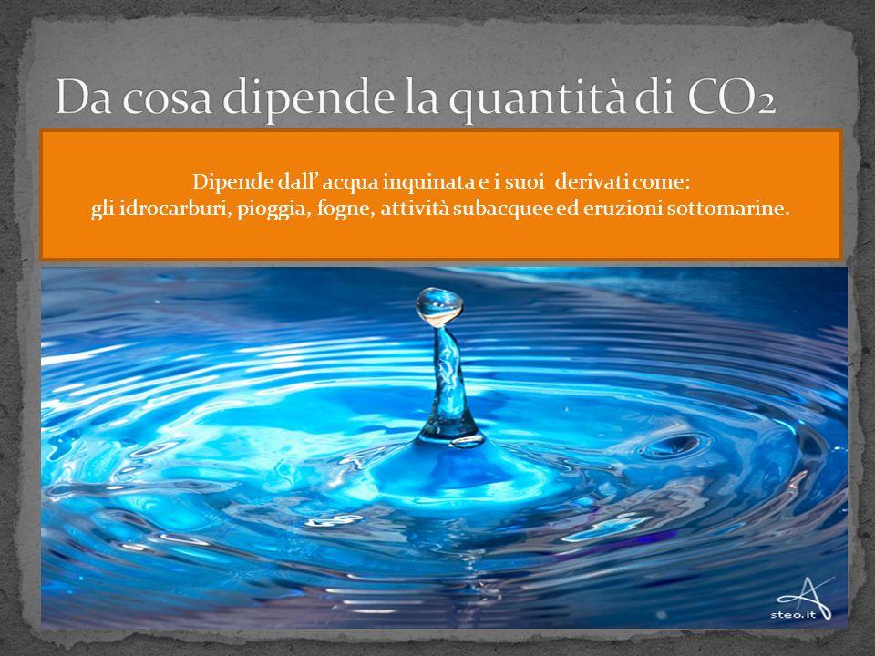 Dipende dall acqua inquinata e i suoi derivati come: gli idrocarburi, pioggia, fogne, attività subacquee ed eruzioni sottomarine.
