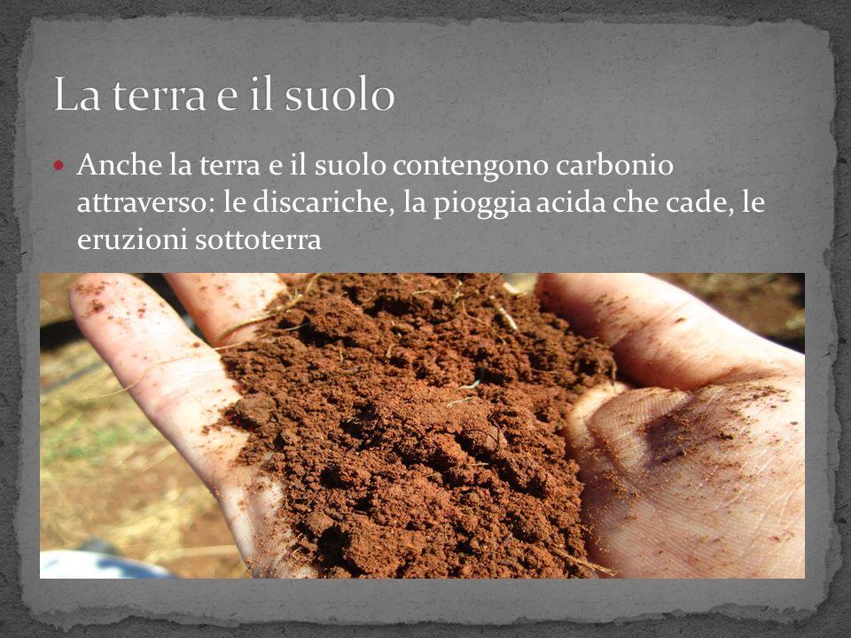 Anche la terra e il suolo contengono carbonio attraverso: le discariche, la pioggia acida che cade, le eruzioni sottoterra