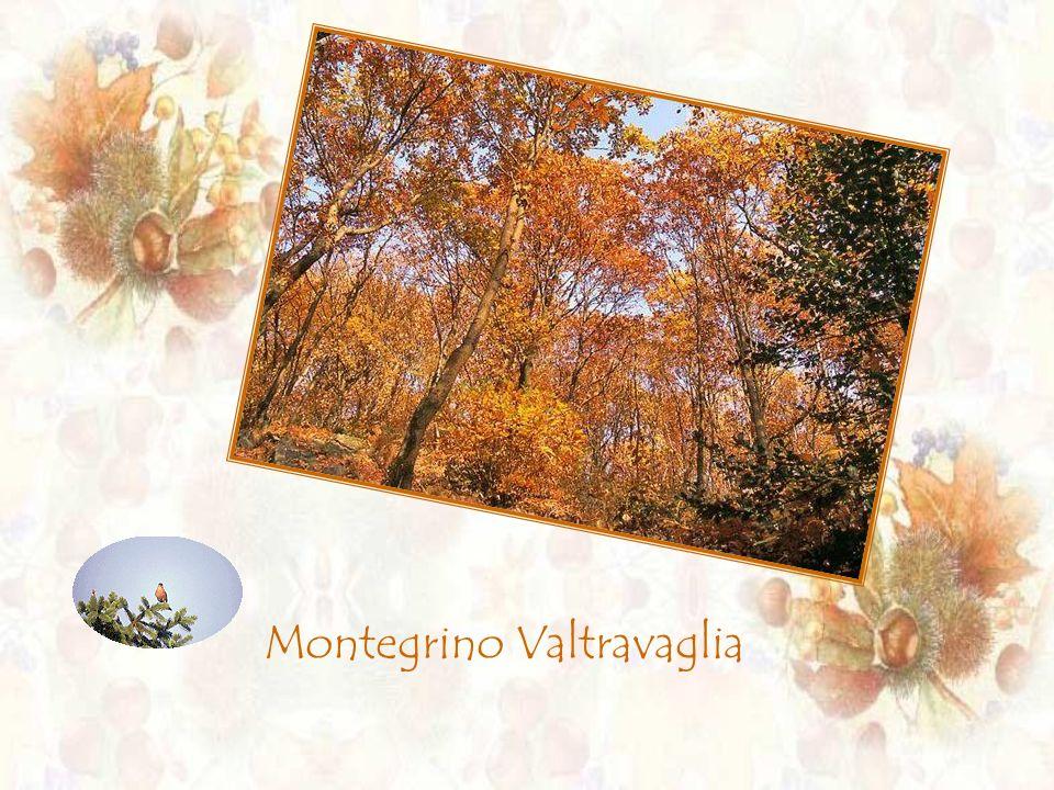 Montegrino Valtravaglia