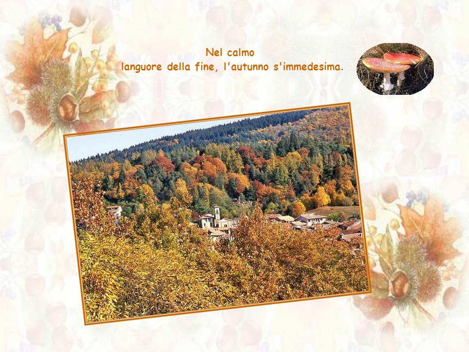 Nel calmo languore della fine, l autunno s immedesima.