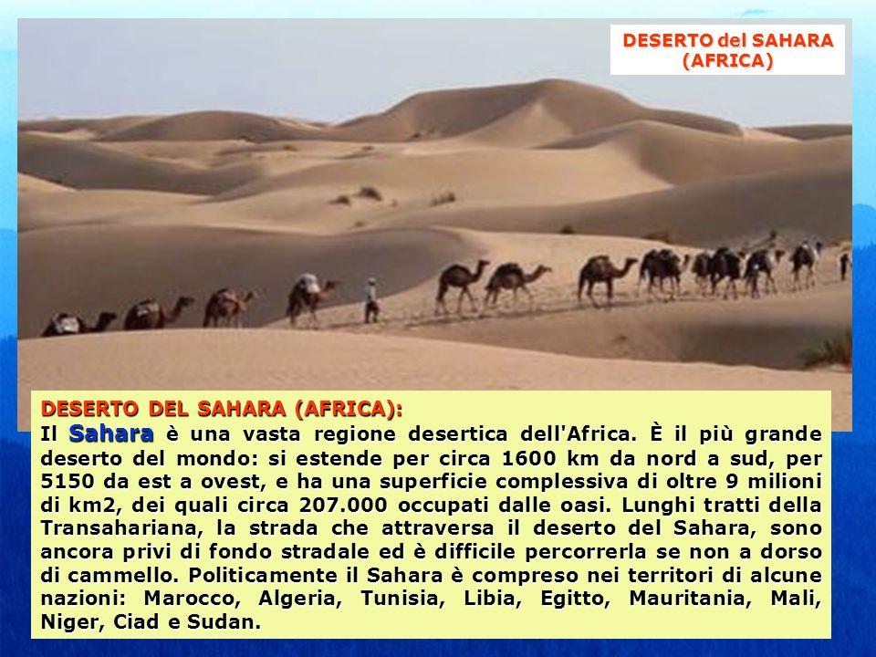 DESERTO DEL SAHARA (AFRICA): Il Sahara è una vasta regione desertica dell'Africa. È il più grande deserto del mondo: si estende per circa 1600 km da n