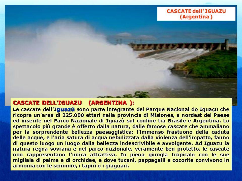 CASCATE DELL IGUAZU (ARGENTINA): CASCATE DELL IGUAZU (ARGENTINA ): Le cascate dell I guazù sono parte integrante del Parque Nacional do Iguaçu che ricopre un area di 225.000 ettari nella provincia di Misiones, a nordest del Paese ed inserite nel Parco Nazionale di Iguazù sul confine tra Brasile e Argentina.