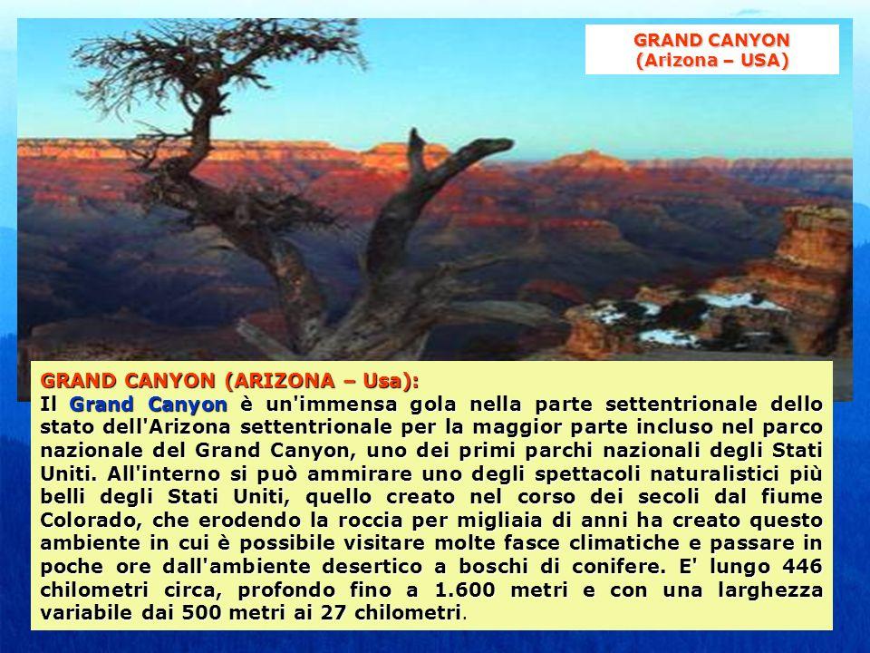 GRAND CANYON (ARIZONA – Usa): Il Grand Canyon è un'immensa gola nella parte settentrionale dello stato dell'Arizona settentrionale per la maggior part