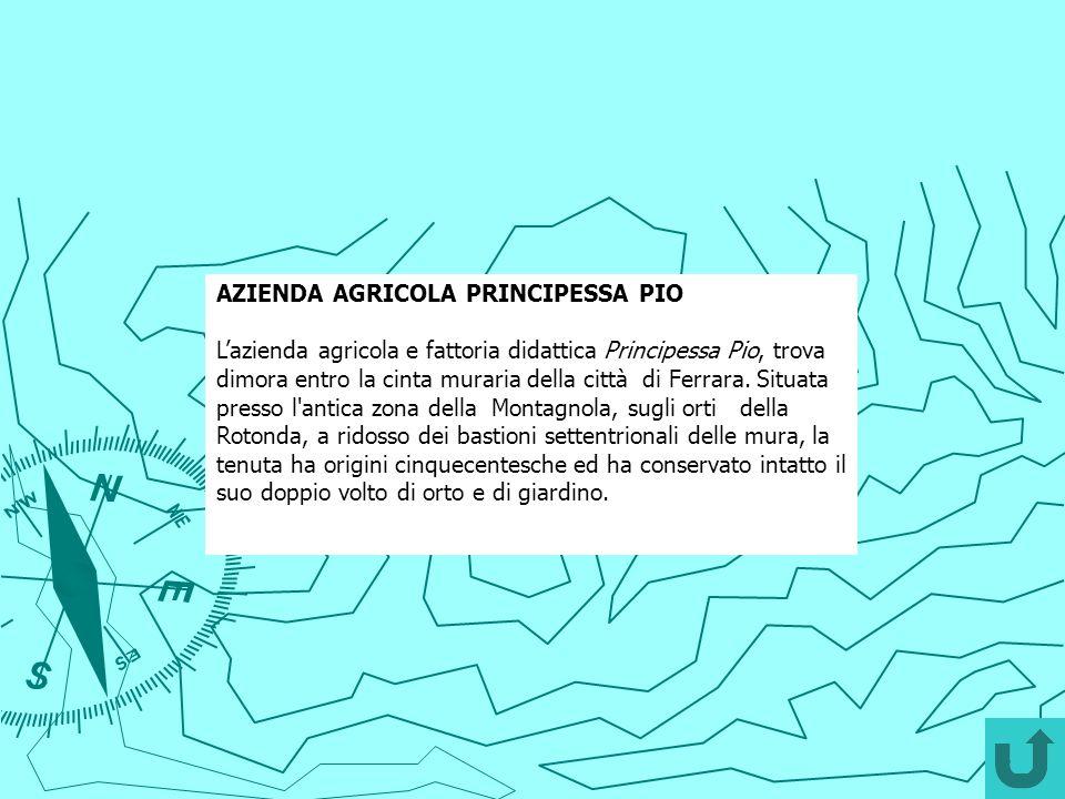 AZIENDA AGRICOLA PRINCIPESSA PIO Lazienda agricola e fattoria didattica Principessa Pio, trova dimora entro la cinta muraria della città di Ferrara. S