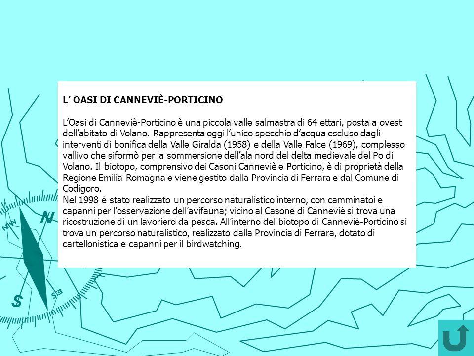 L OASI DI CANNEVIÈ-PORTICINO LOasi di Canneviè-Porticino è una piccola valle salmastra di 64 ettari, posta a ovest dellabitato di Volano. Rappresenta