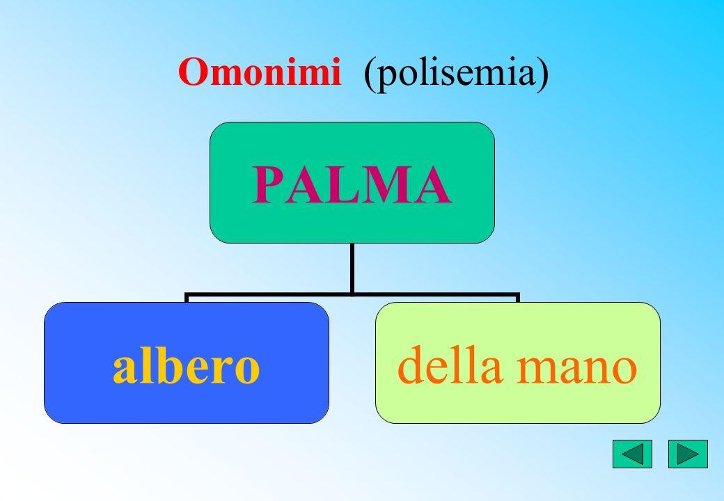 PAROLE POLISEMICHE O OMONIME (parole con più significati) pianta alberodel piede della scuola