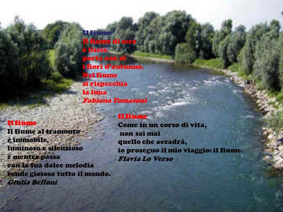 Il fiume Il fiume di sera è liscio porta con sé i fiori dautunno.