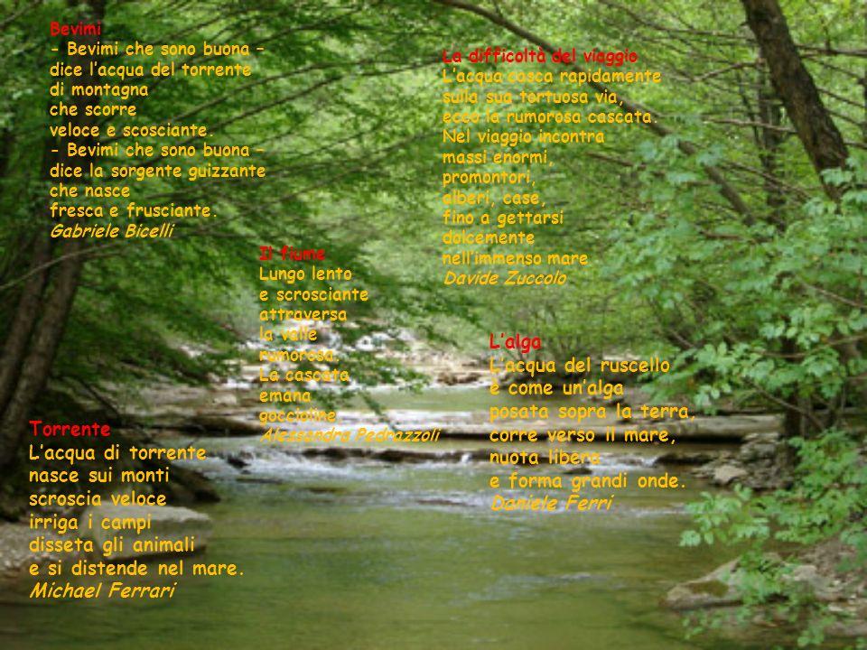 Il fiume Lungo lento e scrosciante attraversa la valle rumorosa. La cascata emana goccioline. Alessandra Pedrazzoli La difficoltà del viaggio Lacqua c