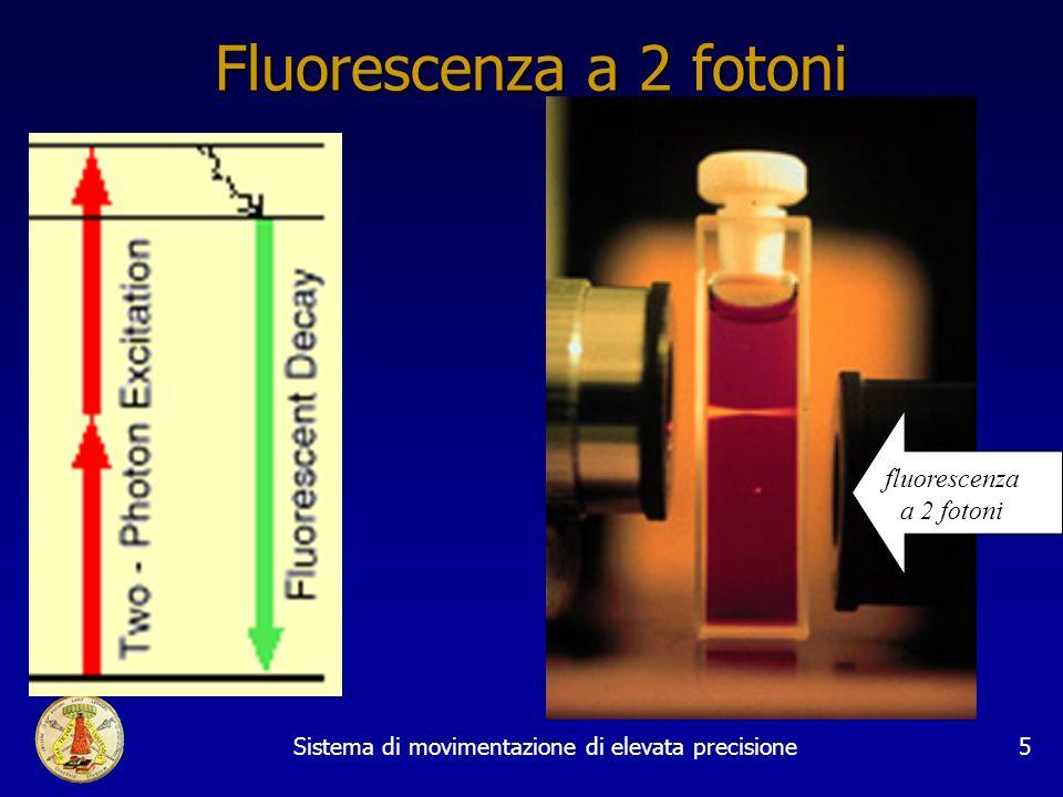 Sistema di movimentazione di elevata precisione5 Fluorescenza a 2 fotoni fluorescenza a 2 fotoni