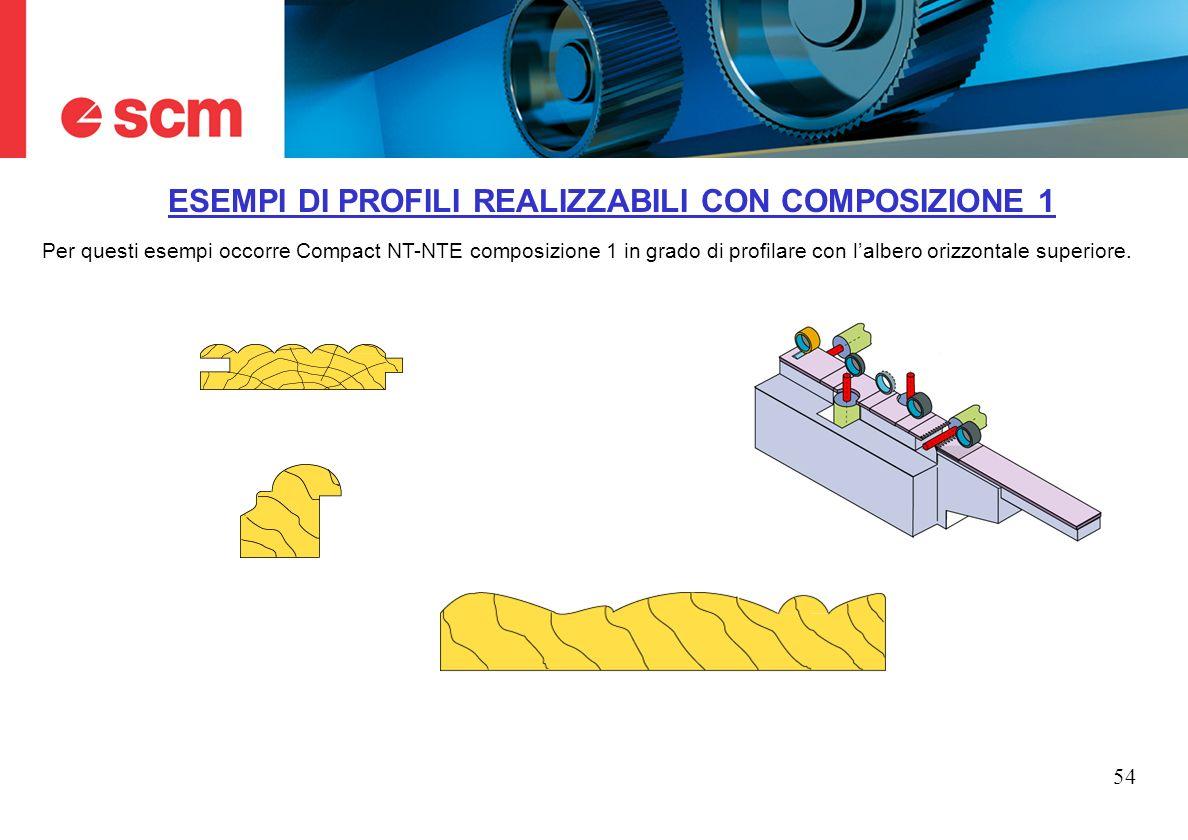 54 ESEMPI DI PROFILI REALIZZABILI CON COMPOSIZIONE 1 Per questi esempi occorre Compact NT-NTE composizione 1 in grado di profilare con lalbero orizzon
