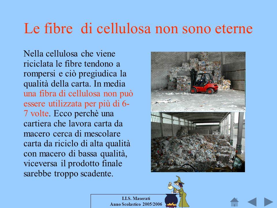 I.I.S. Maserati Anno Scolastico 2005/2006 Le fibre di cellulosa non sono eterne Nella cellulosa che viene riciclata le fibre tendono a rompersi e ciò