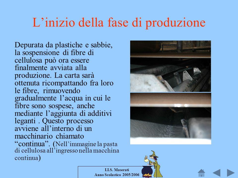 I.I.S. Maserati Anno Scolastico 2005/2006 Linizio della fase di produzione Depurata da plastiche e sabbie, la sospensione di fibre di cellulosa può or