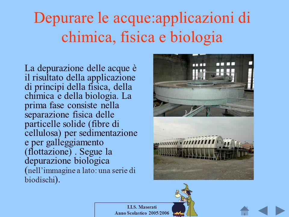 I.I.S. Maserati Anno Scolastico 2005/2006 Depurare le acque:applicazioni di chimica, fisica e biologia La depurazione delle acque è il risultato della