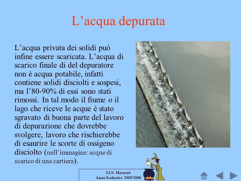 I.I.S. Maserati Anno Scolastico 2005/2006 Lacqua depurata Lacqua privata dei solidi può infine essere scaricata. Lacqua di scarico finale di del depur