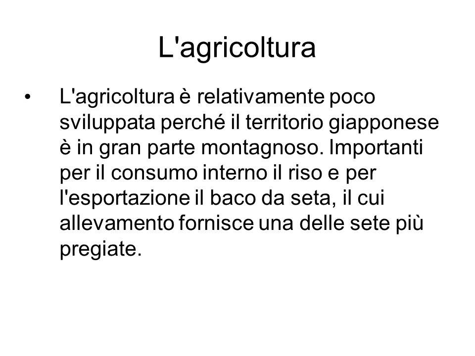 L'agricoltura L'agricoltura è relativamente poco sviluppata perché il territorio giapponese è in gran parte montagnoso. Importanti per il consumo inte