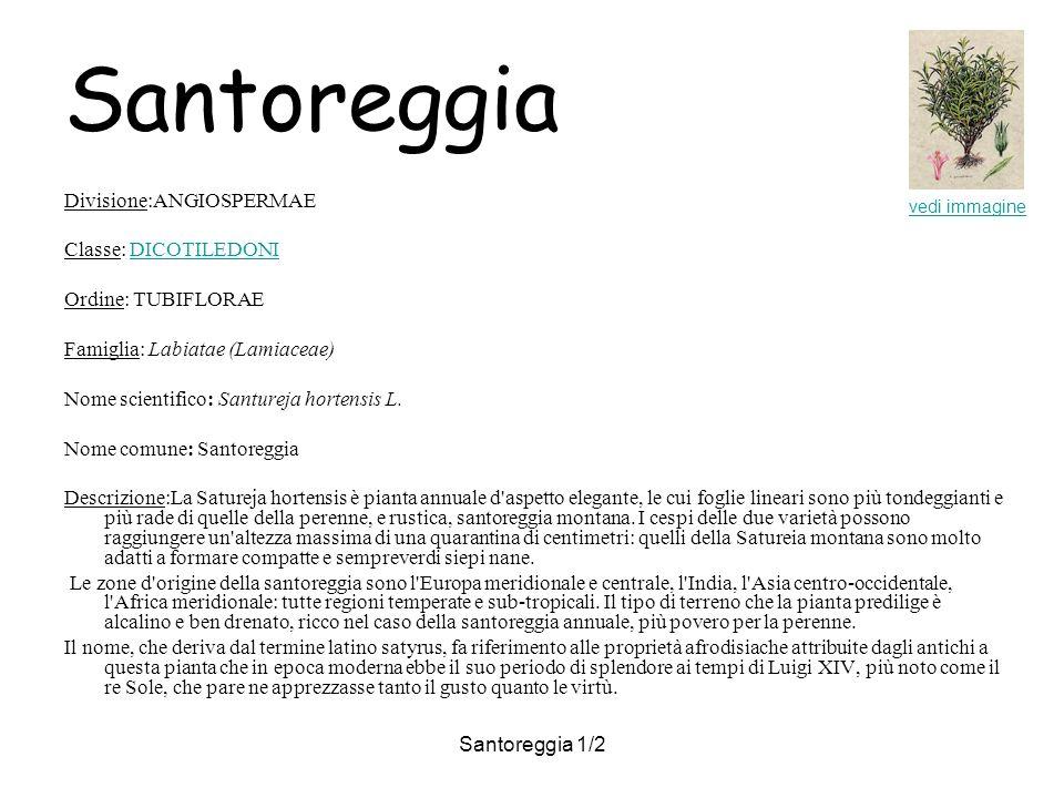 Santoreggia 1/2 Santoreggia Divisione:ANGIOSPERMAE Classe: DICOTILEDONIDICOTILEDONI Ordine: TUBIFLORAE Famiglia: Labiatae (Lamiaceae) Nome scientifico: Santureja hortensis L.