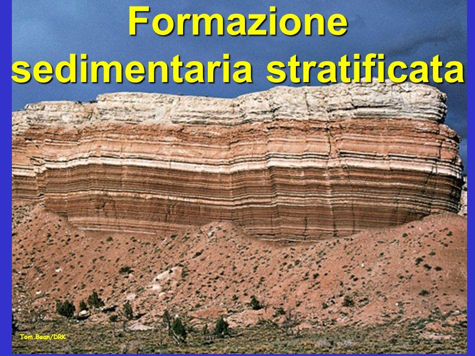 Formazione sedimentaria stratificata Tom Bean/DRK