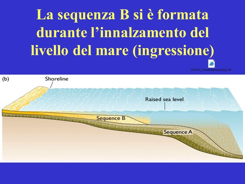 La sequenza B si è formata durante linnalzamento del livello del mare (ingressione)
