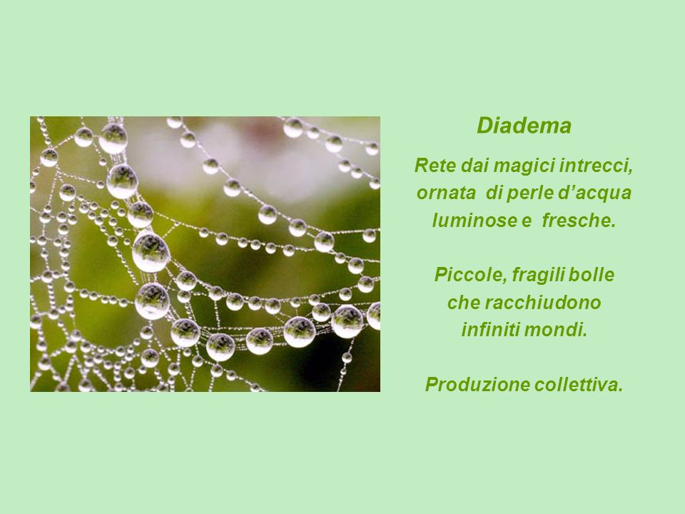 Diadema Rete dai magici intrecci, ornata di perle dacqua luminose e fresche. Piccole, fragili bolle che racchiudono infiniti mondi. Produzione collett