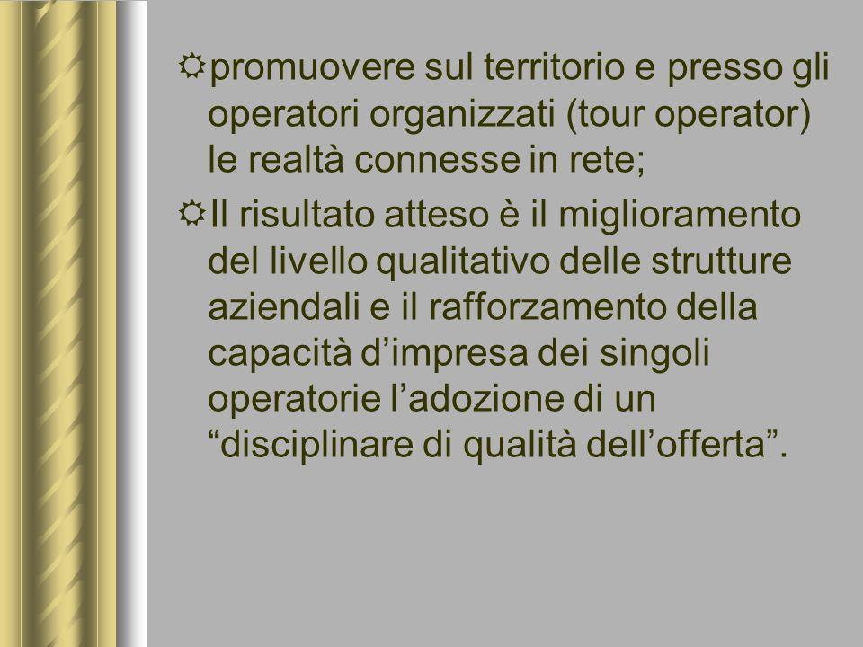 promuovere sul territorio e presso gli operatori organizzati (tour operator) le realtà connesse in rete; Il risultato atteso è il miglioramento del li
