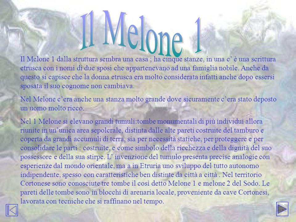 Il Melone 1 dalla struttura sembra una casa ; ha cinque stanze, in una c è una scrittura etrusca con i nomi di due sposi che appartenevano ad una fami