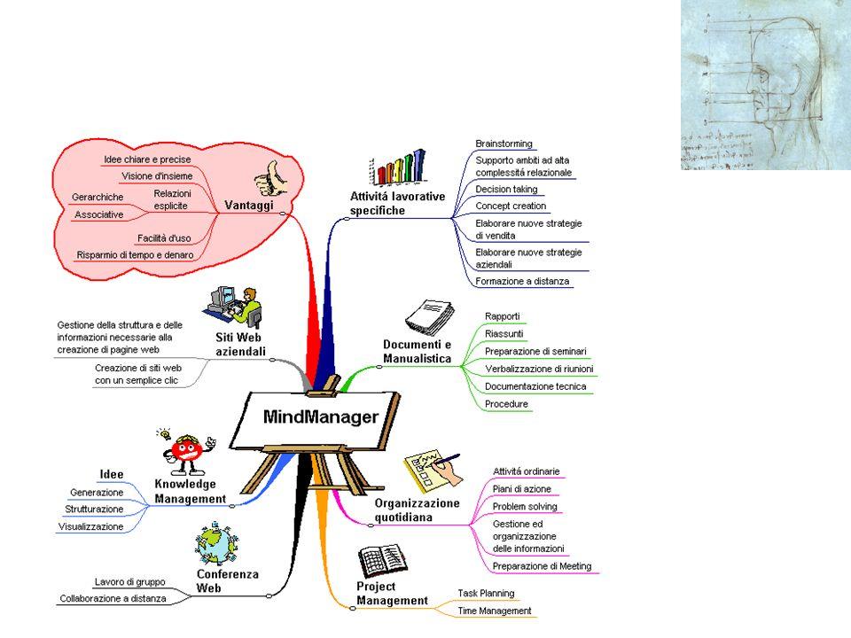Il profilo delle Competenze Si puo definire la competenza - sinteticamente- come linsieme della Conoscenza (knwoledge) e della Abilita(skill) e dei Co