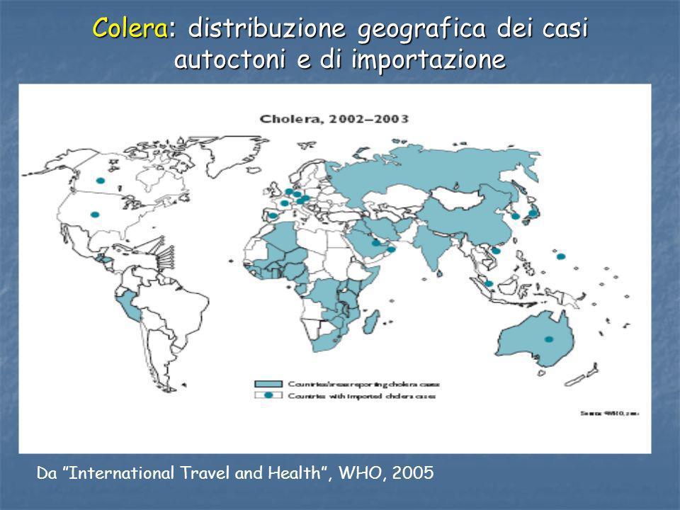 Colera : distribuzione geografica dei casi autoctoni e di importazione Da International Travel and Health, WHO, 2005