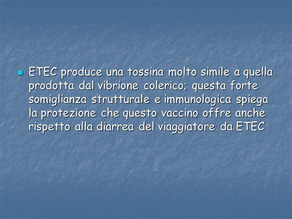 ETEC produce una tossina molto simile a quella prodotta dal vibrione colerico; questa forte somiglianza strutturale e immunologica spiega la protezion