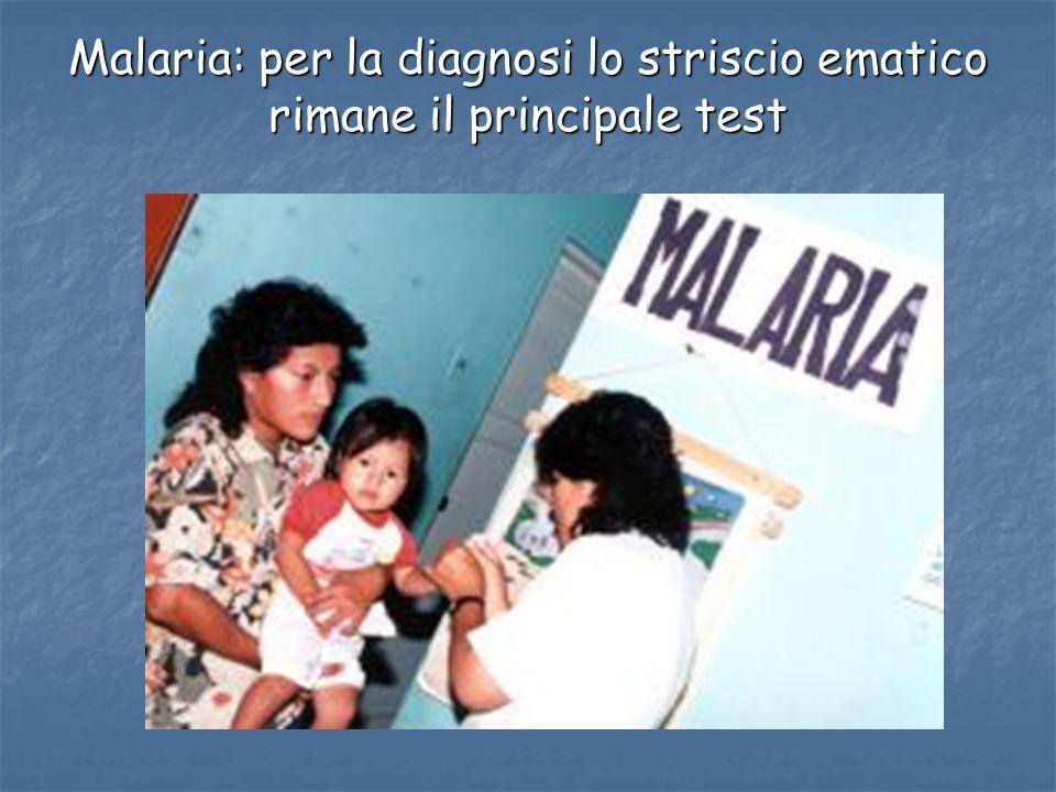 Malaria: per la diagnosi lo striscio ematico rimane il principale test