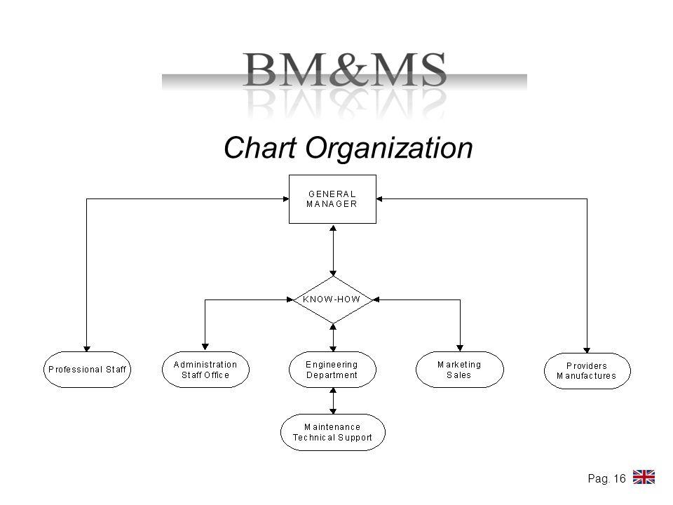 Chart Organization Pag. 16