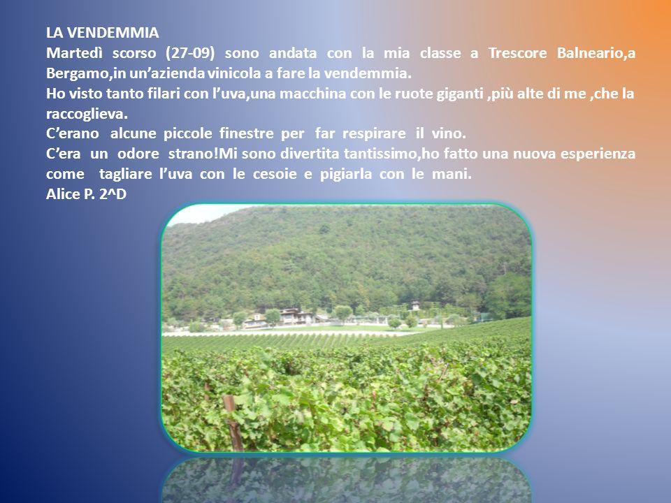 LA VENDEMMIA Martedì scorso (27-09) sono andata con la mia classe a Trescore Balneario,a Bergamo,in unazienda vinicola a fare la vendemmia.