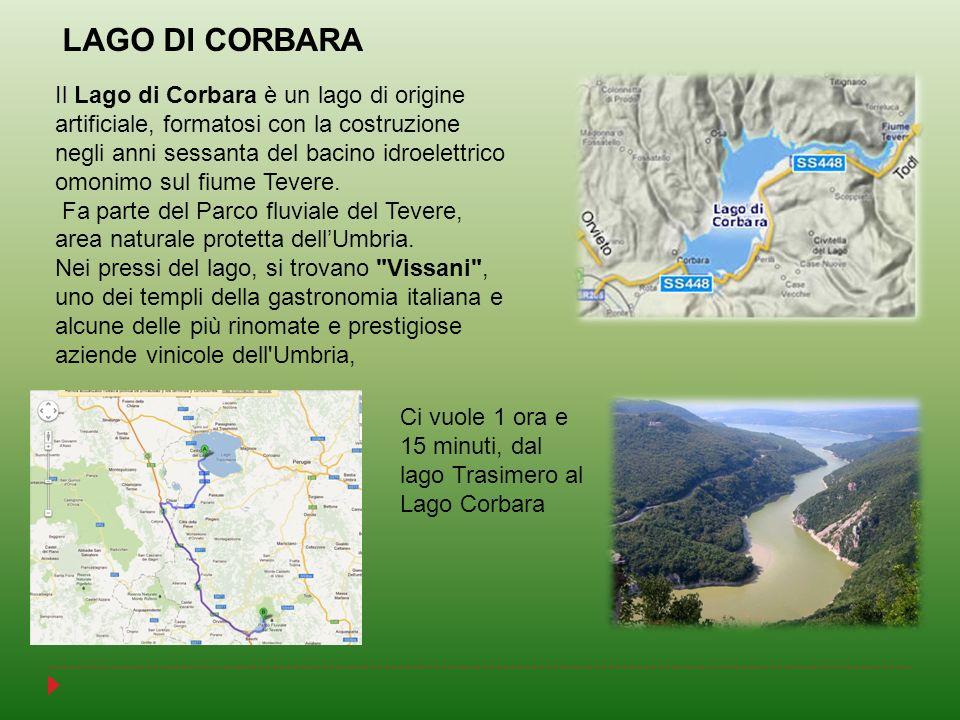 Il Lago di Corbara è un lago di origine artificiale, formatosi con la costruzione negli anni sessanta del bacino idroelettrico omonimo sul fiume Tever