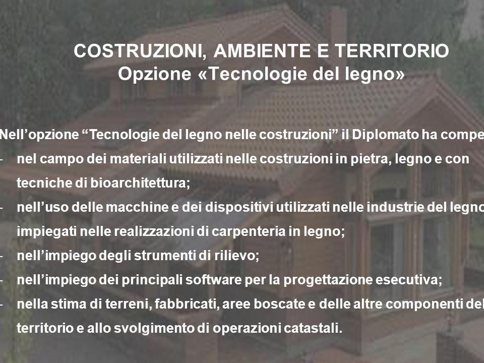 COSTRUZIONI, AMBIENTE E TERRITORIO Opzione «Tecnologie del legno» Nellopzione Tecnologie del legno nelle costruzioni il Diplomato ha competenze: -nel