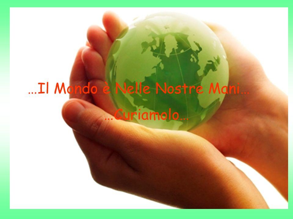 …Il Mondo è Nelle Nostre Mani… …Curiamolo…