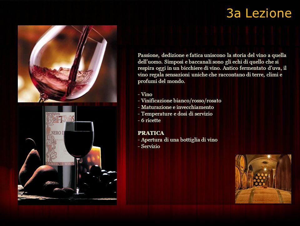 Passione, dedizione e fatica uniscono la storia del vino a quella delluomo.