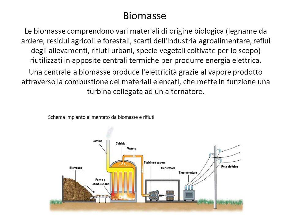 Biomasse Le biomasse comprendono vari materiali di origine biologica (legname da ardere, residui agricoli e forestali, scarti dell'industria agroalime