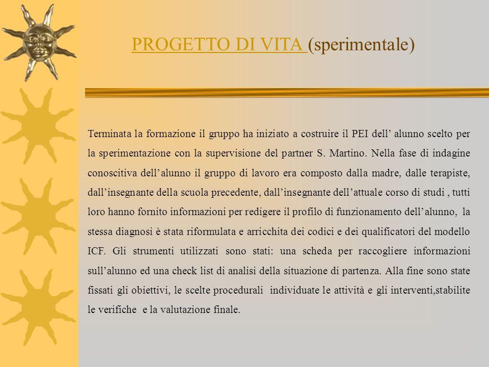 Terminata la formazione il gruppo ha iniziato a costruire il PEI dell alunno scelto per la sperimentazione con la supervisione del partner S. Martino.