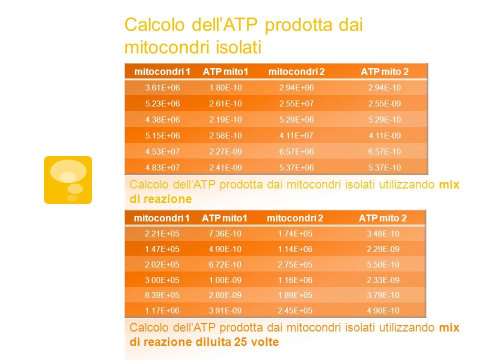 Calcolo dellATP prodotta dai mitocondri isolati Calcolo dellATP prodotta dai mitocondri isolati utilizzando mix di reazione Calcolo dellATP prodotta d