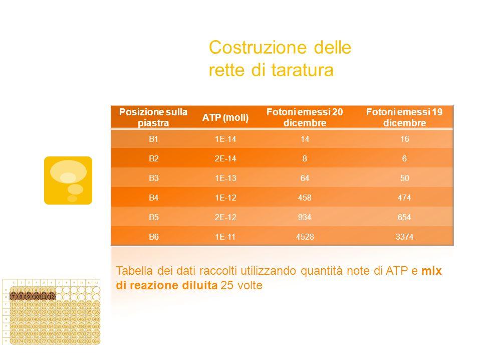 Costruzione delle rette di taratura Tabella dei dati raccolti utilizzando quantità note di ATP e mix di reazione diluita 25 volte