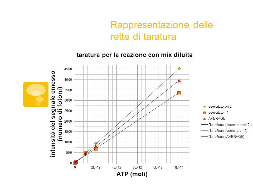 Costruzione delle rette di taratura Tabella dei dati raccolti utilizzando quantità note di ATP e mix di reazione