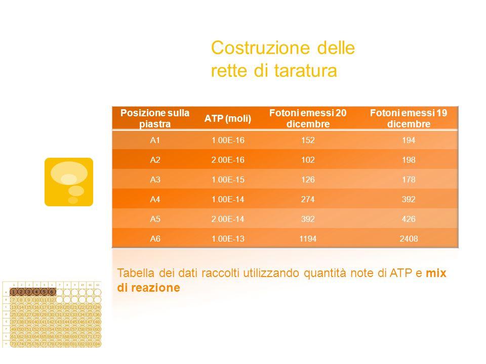 Costruzione delle rette di taratura Tabella dei dati raccolti utilizzando quantità note di ATP e mix di reazione.