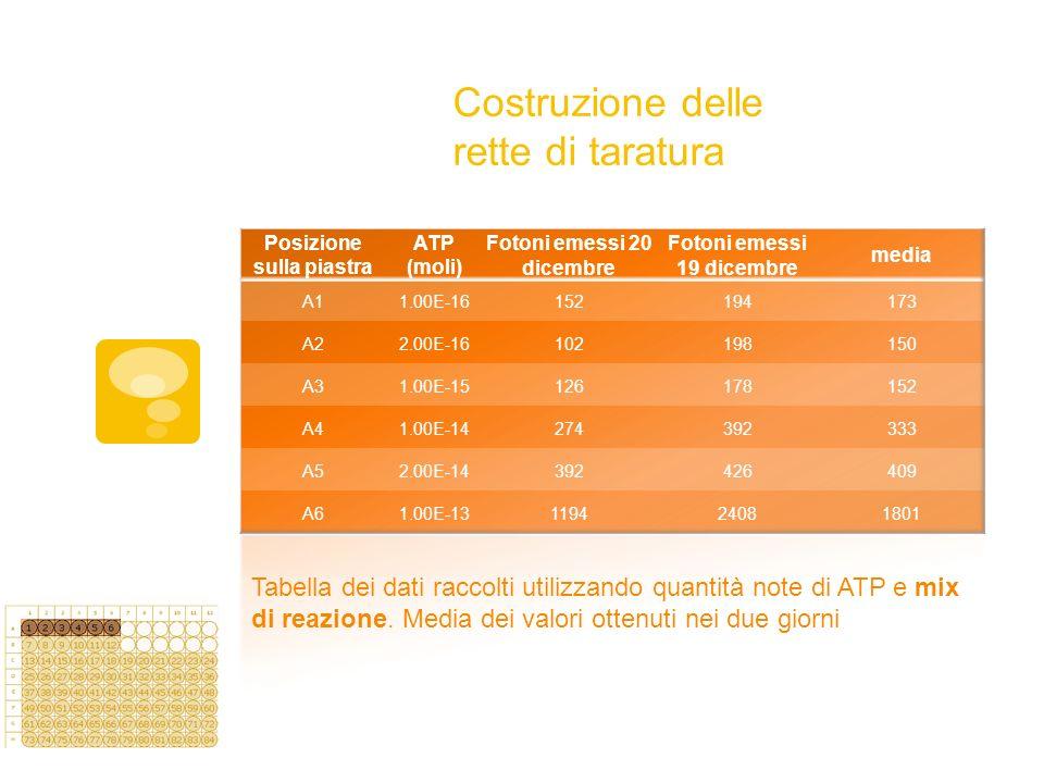Costruzione delle rette di taratura Tabella dei dati raccolti utilizzando quantità note di ATP e mix di reazione. Media dei valori ottenuti nei due gi