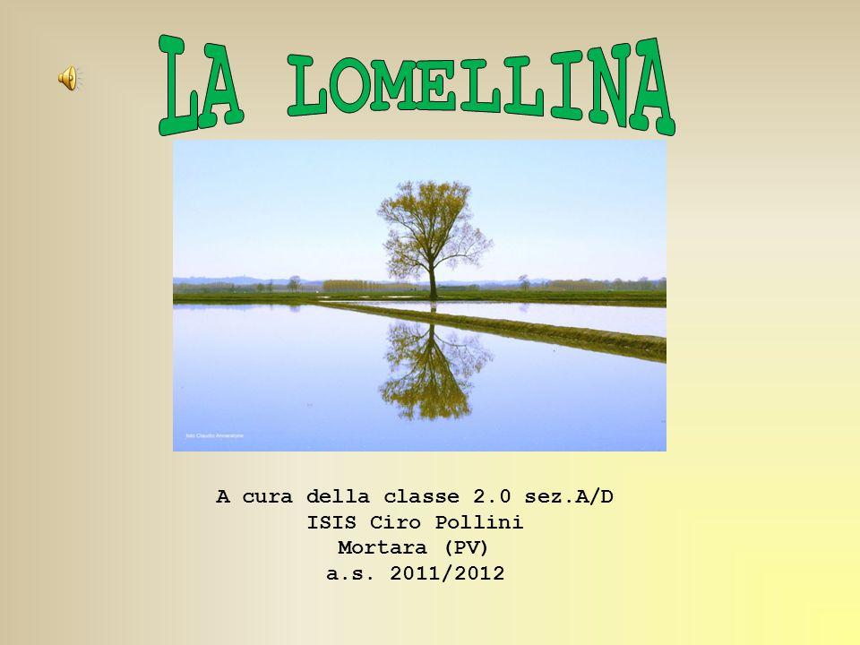 A cura della classe 2.0 sez.A/D ISIS Ciro Pollini Mortara (PV) a.s. 2011/2012