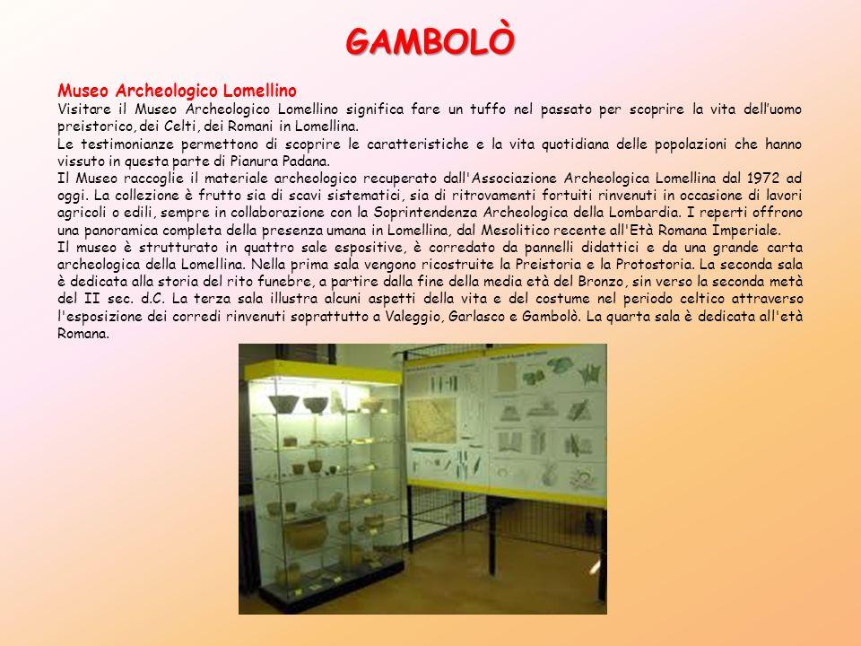 GAMBOLÒ Museo Archeologico Lomellino Visitare il Museo Archeologico Lomellino significa fare un tuffo nel passato per scoprire la vita delluomo preist