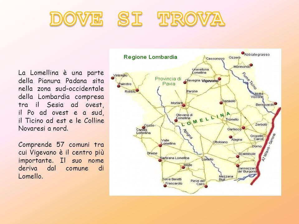 La Lomellina è una parte della Pianura Padana sita nella zona sud-occidentale della Lombardia compresa tra il Sesia ad ovest, il Po ad ovest e a sud,