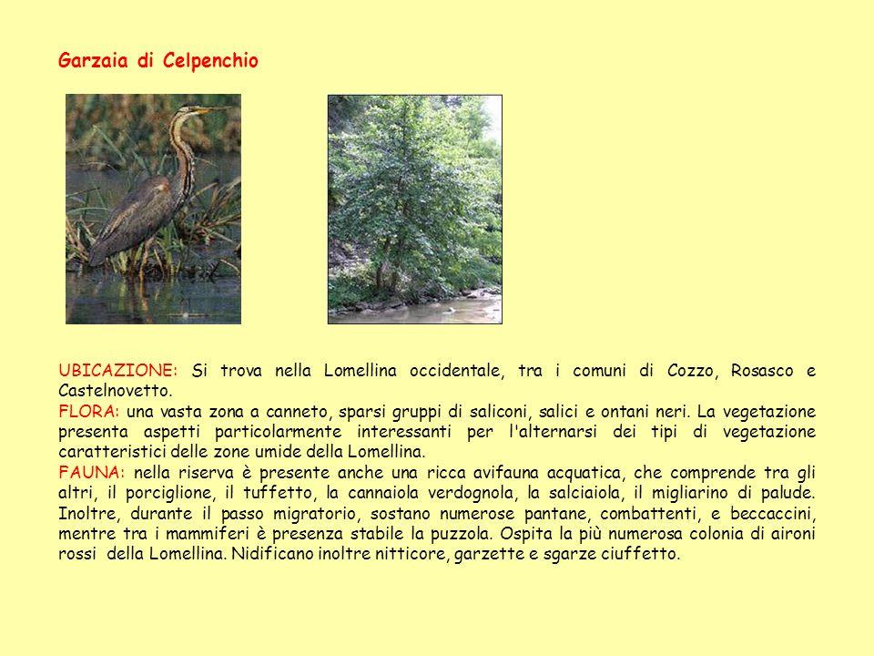 Garzaia di Celpenchio UBICAZIONE: Si trova nella Lomellina occidentale, tra i comuni di Cozzo, Rosasco e Castelnovetto. FLORA: una vasta zona a cannet
